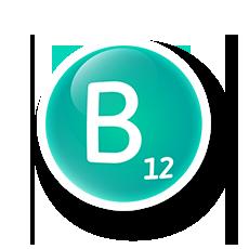 Integratori vitamine gruppo B bambini Orsovit